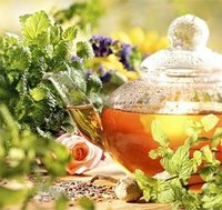 Infusions fruites i herbes /  Infusiones frutas e hierbas / Herbal Teas